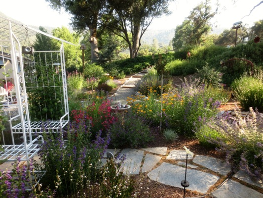 Perennials fill in the rock-lined beds