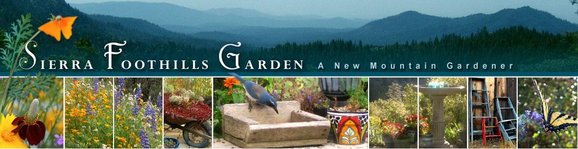 Sierra Foothill Garden