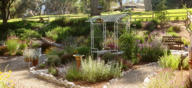 Tim and Barbara's 'ideal' Foothill garden: One year later