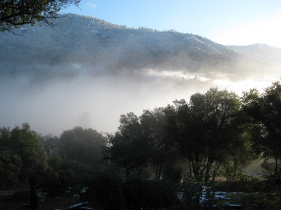 Fast moving fog from the Central Valley can fill can cover the mountain completely in minutes