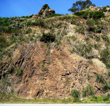 Franciscan Chert Outcrop, Glen Canyon Park, San Francisco, California